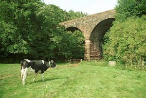 Crowdundle Viaduct, Near The Blue Bell Inn, Newbiggin